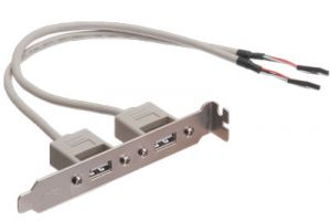 2 Port USB Motherboard Adapter