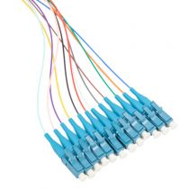 12 Fiber LC/UPC Distribution Style Pigtail, SM, Blue Boots