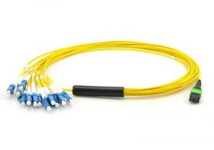 9/125 OS2 Singlemode MTP/MPO to LC Breakout Fiber Patch Cable - Type B - 12 Fiber - 2 Meter