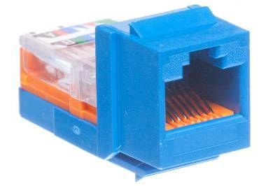 cat5e universal jack module panduit netkey blue 1 panduit netkey cat5e rj45 universal keystone blue showmecables com panduit cat6 jack wiring diagram at suagrazia.org